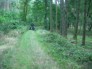 quad tour-rheinsberg-forest-lonely